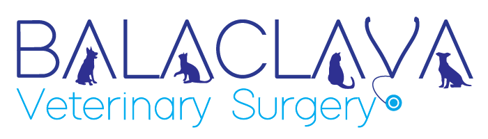 Balaclava Veterinary Clinic QLD logo